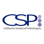 CSP web